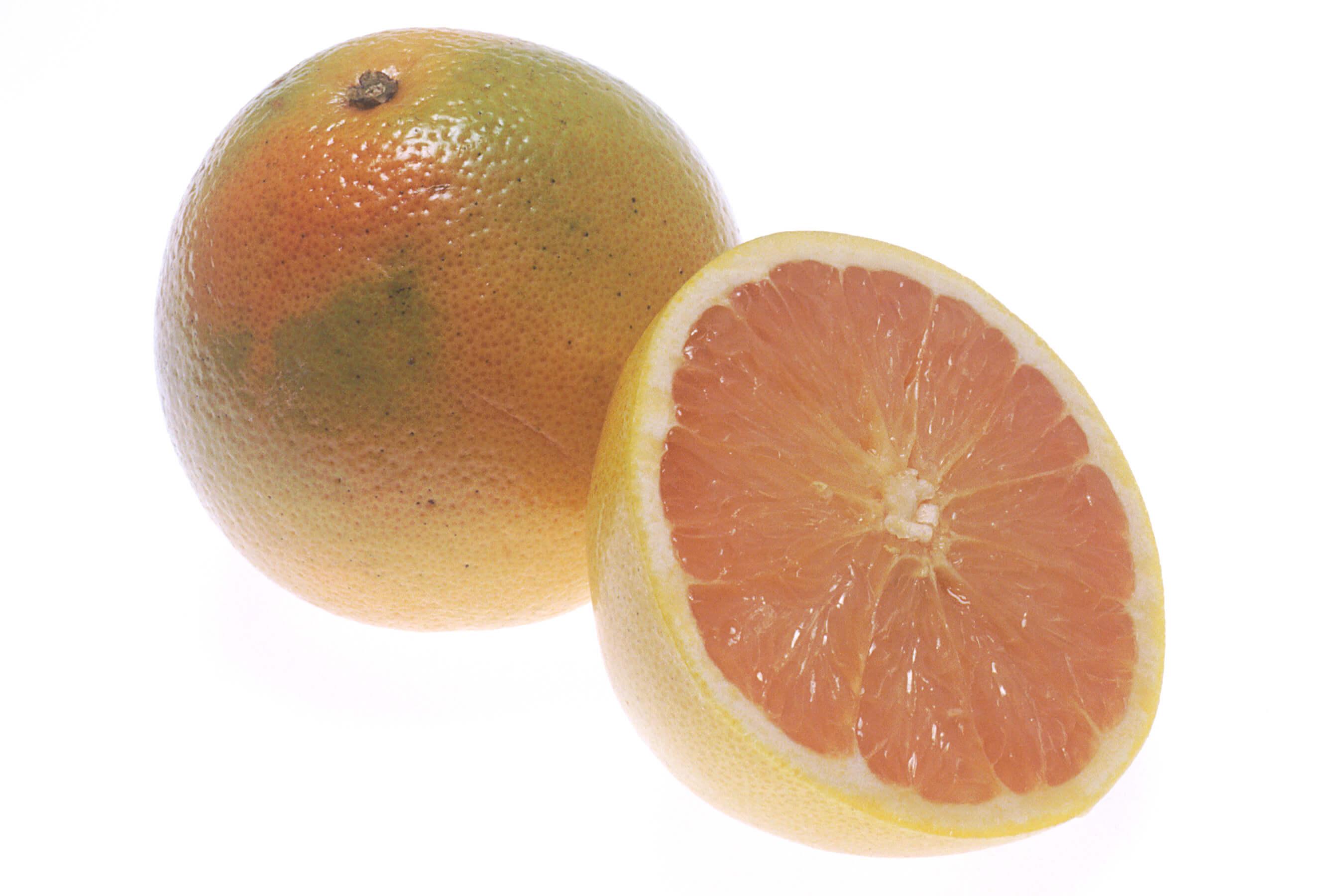 グレープフルーツ 精油 原料 イメージ図